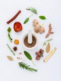 Alternativa medicinska örter för växt- medicin för sund reci Arkivbild
