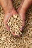 Wood pellets in hands