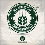 Alternative eco agriculture stamp. Containing: two variations of environmentally sound eco motifs, grunge ink rubber stamp effect, textured watercolor carton Royalty Free Stock Photography