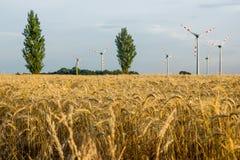 Alternative Energie Die Energie der Zukunft Windgeneratoren auf dem Feld Heißer Sommertag stockbilder