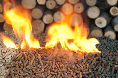 Alternative Energy. Different kind of pellets- oak, pine,sunflower, in flames. Selective focus on the heap Stock Photography