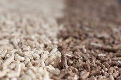 Alternative energy. Pine and oak pellets- alternative energy Royalty Free Stock Photos