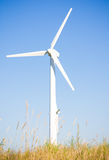 Alternative Energy Royalty Free Stock Image