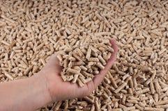 Alternative energy. Pellets in female hand- selective focus on the pellets in the hand Stock Photo