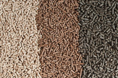 Alternative energy. Three  kind of pellets in a row Stock Photo