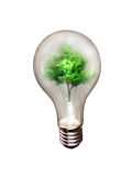 Alternative energy. The concept of alternative energy Royalty Free Stock Photo