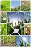 Alternative energy concept Stock Images