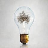 Alternative energy use Stock Photo