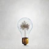 Alternative energy use Stock Image