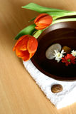 Alternative health and beauty. Bowl of floral scented water with pebbles and fresh flowers , white towels and red tulips, suitable for spa setting or health and Royalty Free Stock Images