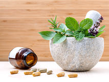 Alternative health care fresh herbs basil ,sage ,rosemary, mint Royalty Free Stock Images