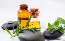 Alternative health care and herbal medicine . Close Up fresh ros Stock Photography