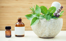 Alternative health care and herbal medicine .Fresh herbs and aromatic oil with mortar and pestle on wooden background. Various he. Rbs rosemary ,sage ,sweet royalty free stock image