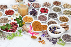 Alternative Herbal Medicine Royalty Free Stock Images