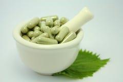 Alternative Kräutermedizin des Naturproduktes stockbild