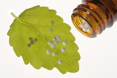 Alternative medicine. A symbolic photo with globule pills and plant for alternative homeopathic medicine Royalty Free Stock Photos