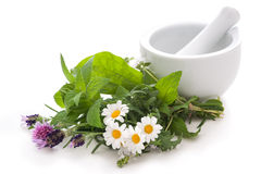 Alternative medicine Royalty Free Stock Photography