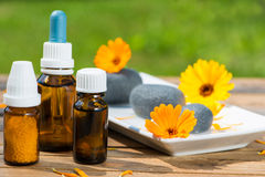 Free Alternative Medicine Stock Photo - 33057150