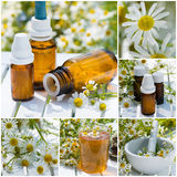 Alternative medicine collage Stock Photos
