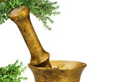 Alternative medicine concept Stock Images