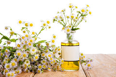 Alternative medicine concept - bottle with camomile on wooden ta Stock Photo