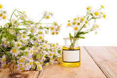 Alternative medicine concept - bottle with camomile on wooden ta Stock Image