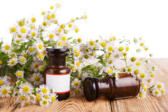 Alternative medicine concept - fragrant oil in a bottle with cam Royalty Free Stock Image