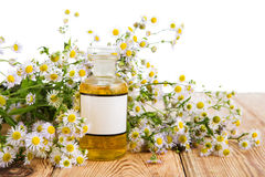 Alternative medicine concept - fragrant oil in a bottle with cam Stock Photos