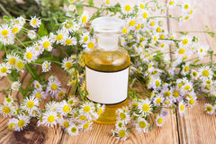 Alternative medicine concept - fragrant oil in a bottle with cam Royalty Free Stock Photo