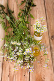 Alternative medicine concept - fragrant oil in a bottle with cam Stock Photo