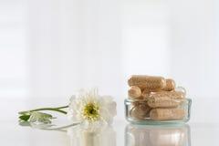 Alternative medicine concept Royalty Free Stock Images