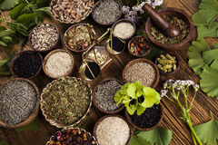 Alternative medicine, dried herbs background Royalty Free Stock Photos