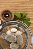 Alternative Medicine. Ginkgo Biloba Therapy Royalty Free Stock Images