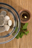 Alternative medicine. ginkgo biloba therapy Stock Photo