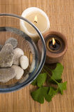Alternative medicine. ginkgo biloba therapy Royalty Free Stock Image