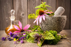 Alternative medicine. Healing herbs with mortar and bottle of essential oil on wood. Alternative medicine concept stock image