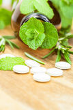 Alternative medicine with herbal and homeopathic pills Stock Photography
