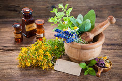 Alternative medicine, Herbal medicine. Mortar with fresh herbs and empty tag on wooden background Stock Image