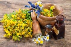 Alternative medicine, Herbal medicine. Mortar with fresh herbs on wooden background Stock Photos