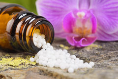Alternative medicine with herbal pills Royalty Free Stock Photography