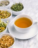 Alternative Medicine. Herbal Therapy. Infusion of healing plants royalty free stock photo