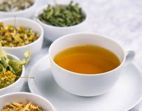 Alternative Medicine. Herbal Therapy. Infusion of healing plants stock images