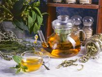 Alternative Medicine. Herbal Therapy. Infusion of healing plants royalty free stock photos