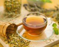 Alternative Medicine. Herbal Therapy. Infusion of healing plants royalty free stock photography