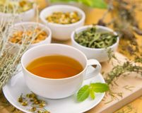 Alternative Medicine. Herbal Therapy. Infusion of healing plants royalty free stock images