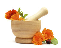 Alternative medicine and herbal treatment Royalty Free Stock Photo