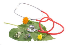 Alternative medicine herbs and stethoscope on leaf Royalty Free Stock Photos