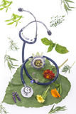 Alternative medicine herbs and stethoscope on leaf Royalty Free Stock Image