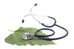 Alternative medicine herbs and stethoscope on leaf Stock Photo