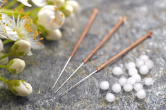 Alternative medicine with homeopathic pills and acupuncture needles Royalty Free Stock Image